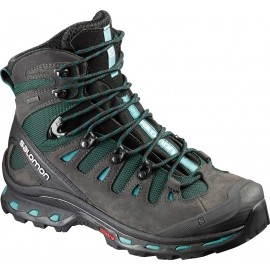 Salomon QUEST 4D 2 GTX W