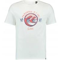 O'Neill LM PARADISE T-SHIRT - Pánske tričko