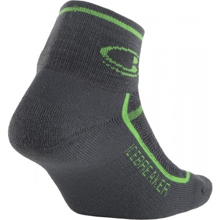 Technické ponožky - Icebreaker MULTISPORT CUSHION MINI - 2